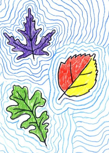 Contour Line Drawing Projects : Th grade archives page of art projects for kids